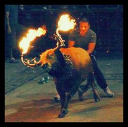 This type of bullfighting has remained legal in Catalan all along. (Change.org photo)