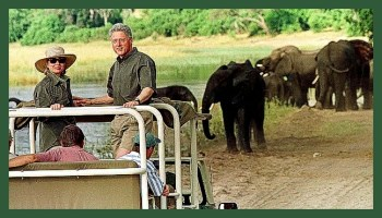 Hillary & Bill Clinton with elephants. (Save The Elephants photo)