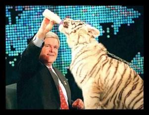 Newt Gingrich feeds a tiger. (Facebook photo)