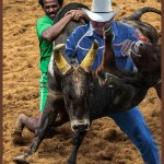 What if the U.S. Supreme Court ruled rodeo unconstitutional?