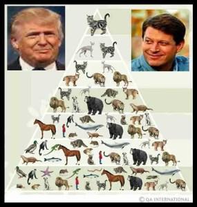 Trump & Gore