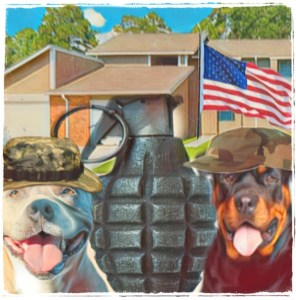 Pit bull and Rottweiler in military housing.
