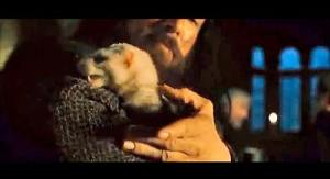 "The ferret at the Inn of the Prancing Pony,  in ""The Fellowship of the Ring."""