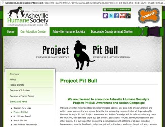 Project Pit Bull