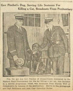 "According to Emma Jacobs, who researched the history of this 1925 photo, the story that the dog Pep had been sentenced to life in prison for killing a cat was a publicist's fiction. Pep was in truth a ""therapy dog"" for the human prisoners."