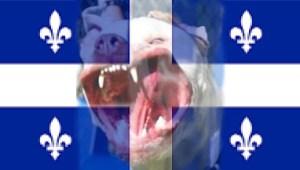 Quebec flag pit