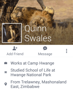 Photo safari guide Quinn Swales, 40, used a photo of Cecil as his Facebook cover image.