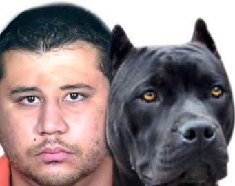 George Zimmerman with pit bull