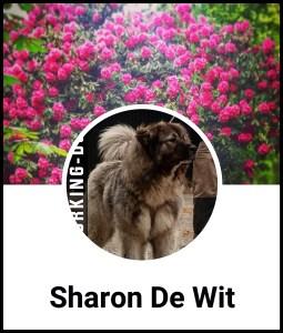Sharon De Wit Facebook profile