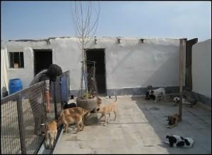 VAFA shelter near Tehran