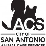 Audit hits San Antonio Animal Care Services for neglect of public safety
