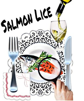 Salmon on a plate with salmon lice