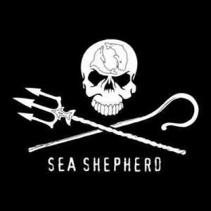 Sea Shep. Logo