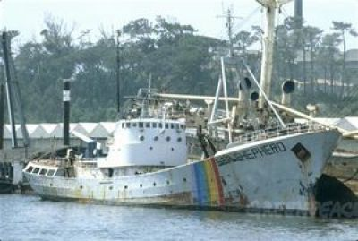 The original Sea Shepherd ship. (Sea Shepherd Conservation Society photo)