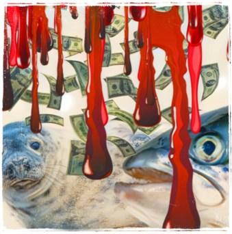 seal and salmon