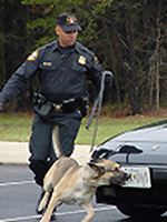 Another Secret Service dog at work.