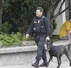 Secret Service dog on patrol.