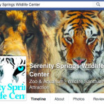 Nine lives running out at Serenity Springs Wildlife Center