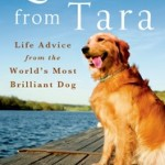 Lessons from Tara