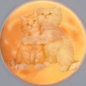 Two kittens in the moon