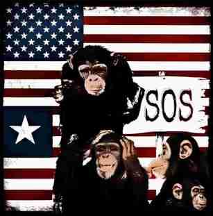 US and Liberian chimpanzees