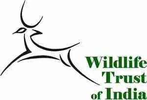 WTIStack-logo_green