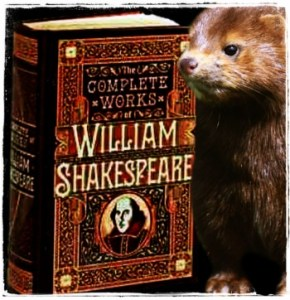 William Shakespeare's book and mink
