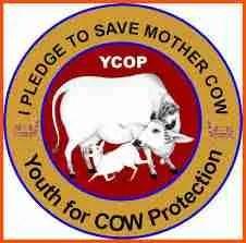 YCOP logo