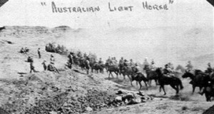 Brumby roundup for World War I cavalry.