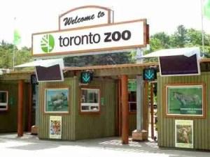 (Toronto Zoo photo)