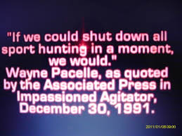 "Pro-hunting organizations still make extensive use of HSUS president Wayne Pacelle's early involvement in leading ""hunt sabotage"" protests."