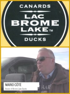 Brome Lake Ducks owner Mario Cote discusses the first 2016 fire with media.