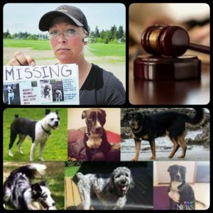 Emma Paulsen & some of the dogs whose deaths she was convicted of. (Beth Clifton collage)