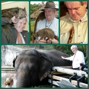 Newt Gingrich with a variety of animals. (Tumblr photos)