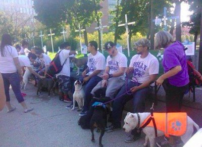 Pit bull advocates protest in front of Julie Kowal's memorial to dog attack victims.