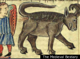 Medieval image of farting goat. The problem in Bali is a medieval approach to rabies control.