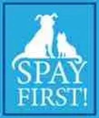 spay-first-sm