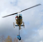 USFWS translocating Columbian whitetailed deer by helicopter.