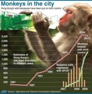 Hong Kong macaque control program data––a program similar to the one in Shimla.