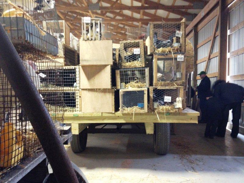 Mount Hope Auction Ohio