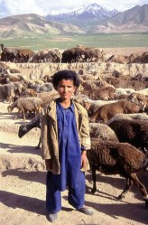 Shepherd in Afghanistan's Badakhshan Province