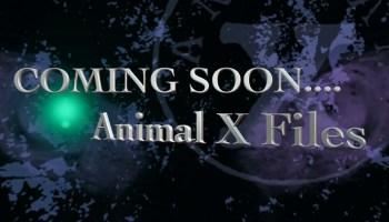 coming soon Animal X Files
