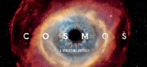 cosmosfox