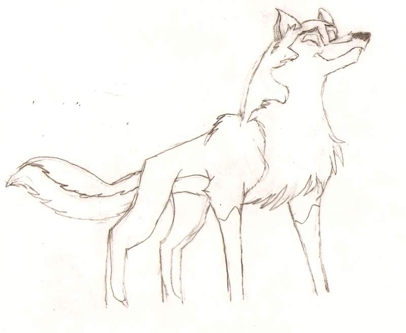 balto and aleu colouring pages