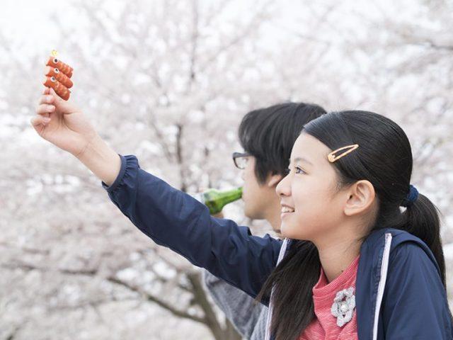 Camera Japan 2017 Close-Knit