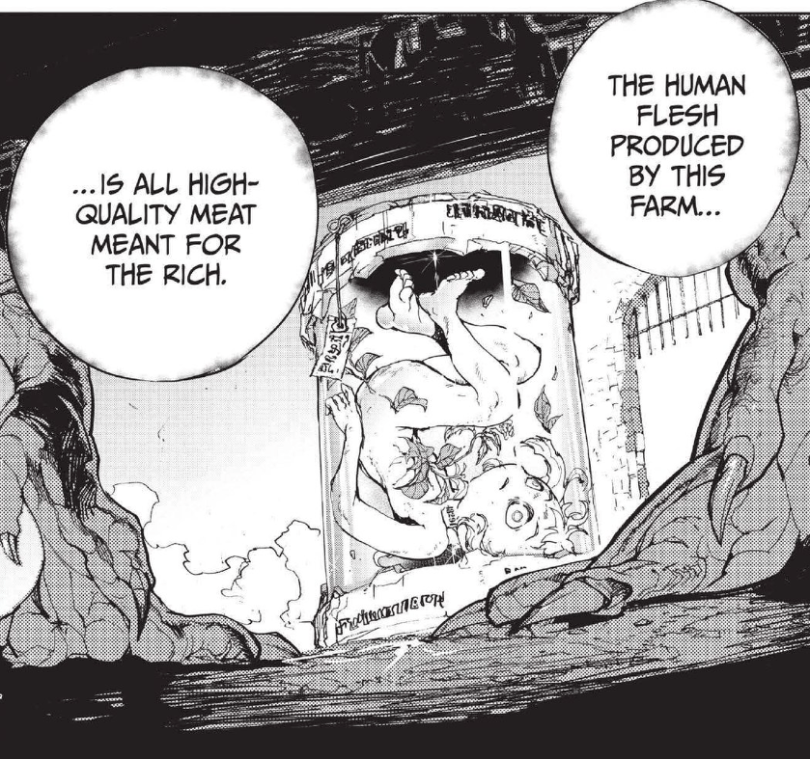 """A manga panel showing a young girl, dead, in a jar with a flower growing out of her. Text reads """"The human flesh produced on this farm is all high-quality meat for the rich."""""""