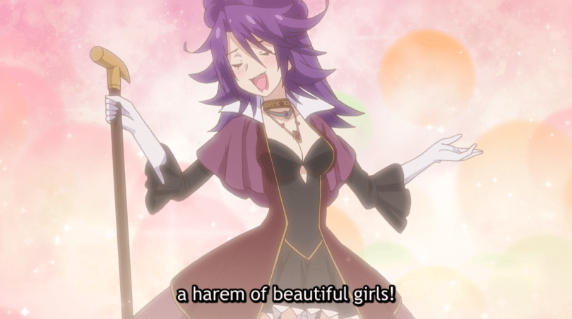 the villain against a sparkly background. subtitle: a harem of beautiful girls!