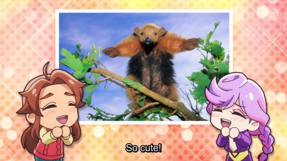 "Kanamori and Urahara stand to either side of a photo of an anteater standing on its hind legs, forearms spread out in a T-pose. The two squee ""So cute!"""