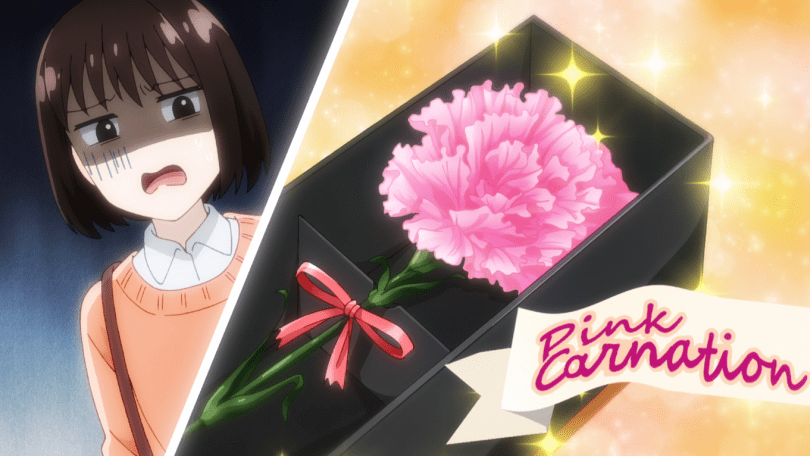 "Ryo sends Ichika another flower. This time, it's a pink carnation, which is a flower that can symbolize ""fascination"" and ""love""."