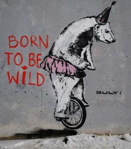 Resultado de imagen para Graffiti vegetarianismo